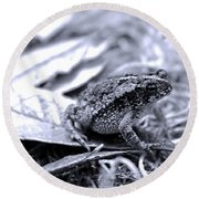 Toad Carefully Round Beach Towel