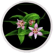 Toad Lily Round Beach Towel