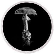 Toad Stool Round Beach Towel