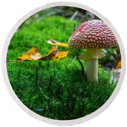 Toadstool Round Beach Towel
