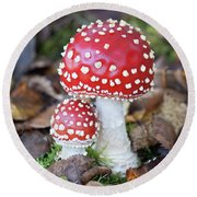 Toadstools In The Woods Vi Round Beach Towel