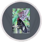 Round Beach Towel featuring the photograph Together Always by Kicking Bear Productions