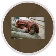 Tolerating Patience Round Beach Towel