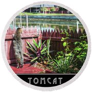 Round Beach Towel featuring the photograph Tomcat Breakfast by Hanny Heim
