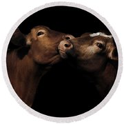 Toned Down Bovine Affection Round Beach Towel