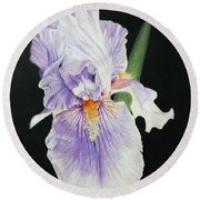 Tonto Basin Iris Round Beach Towel by Marna Edwards Flavell