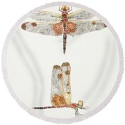 Top And Side Views Of A Male Calico Pennant Dragonfly Round Beach Towel