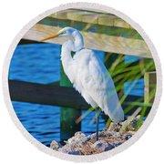 Topsail Egret Round Beach Towel