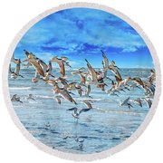 Topsail Skimmers Round Beach Towel