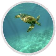 Tortoise Round Beach Towel by Happy Home Artistry