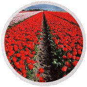 Tot Far Away Red Tulips Field Round Beach Towel by Mihaela Pater
