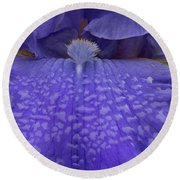 Round Beach Towel featuring the photograph Totally Blue Iris by Jean Noren