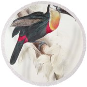 Toucan Round Beach Towel by Edward Lear
