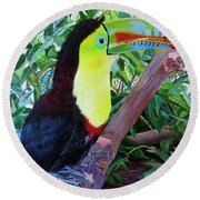 Toucan Portrait 2 Round Beach Towel by Marilyn McNish