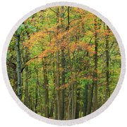 Touch Of Autumn Round Beach Towel