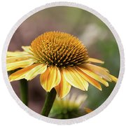 Touched With Gold - Round Beach Towel