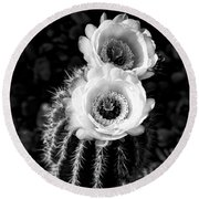 Tourch Cactus Bloom Round Beach Towel