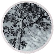 Round Beach Towel featuring the photograph Towering by Linda Lees