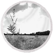 Towering Over The Prairie Round Beach Towel