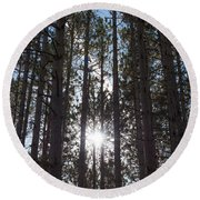 Towering Pines Round Beach Towel