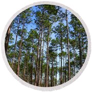Trail Through The Pine Forest Round Beach Towel