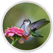 Tranquil Joy Hummingbird Square Round Beach Towel