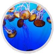 Translucent Jellyfish Round Beach Towel