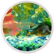 Transparent Catfish Round Beach Towel by Barbara Yearty