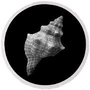 Trapezium Horse Conch Sea Shell Round Beach Towel