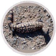 Traveler The Gila Monster Round Beach Towel