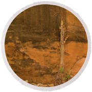 Tree And Sandstone Round Beach Towel