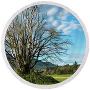 Tree And Sky Round Beach Towel
