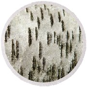 Round Beach Towel featuring the photograph Tree Bark Abstract by Christina Rollo