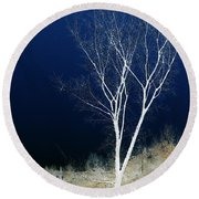 Round Beach Towel featuring the photograph Tree By Stream by Stuart Turnbull