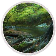 Tree By Water Round Beach Towel by Lena Auxier