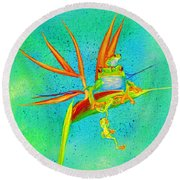 Tree Frog On Birds Of Paradise Square Round Beach Towel