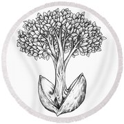 Round Beach Towel featuring the drawing Tree From Seed by Aaron Spong