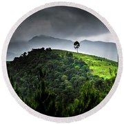 Tree In Kilimanjaro Round Beach Towel