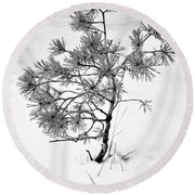 Tree In Winter Round Beach Towel