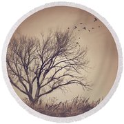 Round Beach Towel featuring the photograph Tree by Juli Scalzi