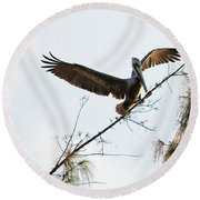Tree Landing Round Beach Towel