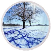 Round Beach Towel featuring the photograph Tree Light by Phil Koch