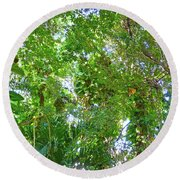 Round Beach Towel featuring the photograph Tree M2 by Francesca Mackenney