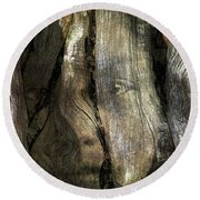 Round Beach Towel featuring the photograph Tree Memories # 24 by Ed Hall