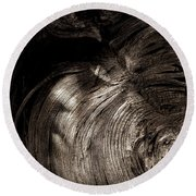 Round Beach Towel featuring the photograph Tree Memories # 31 by Ed Hall