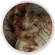 Round Beach Towel featuring the photograph Tree Memories # 34 by Ed Hall