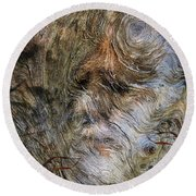 Round Beach Towel featuring the photograph Tree Memories # 35 by Ed Hall