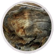 Round Beach Towel featuring the photograph Tree Memories # 36 by Ed Hall