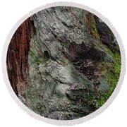 Round Beach Towel featuring the photograph Tree Memories # 38 by Ed Hall