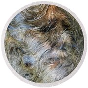 Round Beach Towel featuring the photograph Tree Memories # 40 by Ed Hall